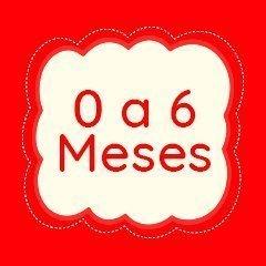 0 a 6 Meses